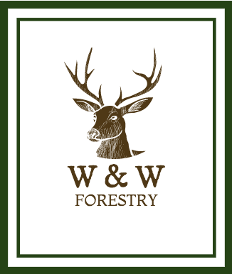 Woods and Wildlife Forestry